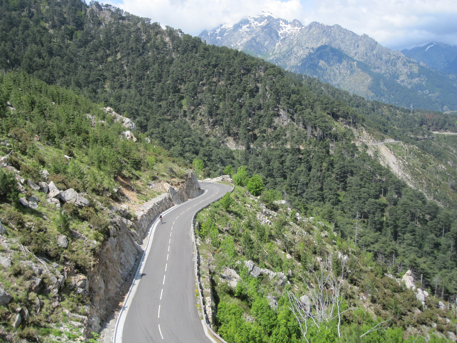Col de Sorba : the most Alpine on the island. Perfect tarmac too, which is nice !